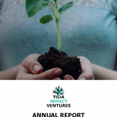 tillia-annual-report-2018-01.png
