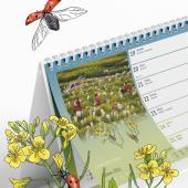 selgen-kalendar21-01.png