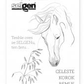 selgen-reklamni-01.png